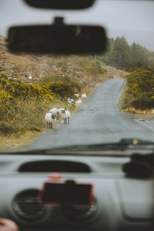 road trip irlande location