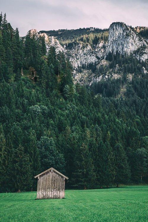 chateau neuschwanstein blog allemagne