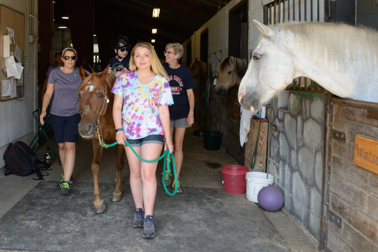 Hippotherapy — UpReach Therapeutic Equestrian Center, Inc.