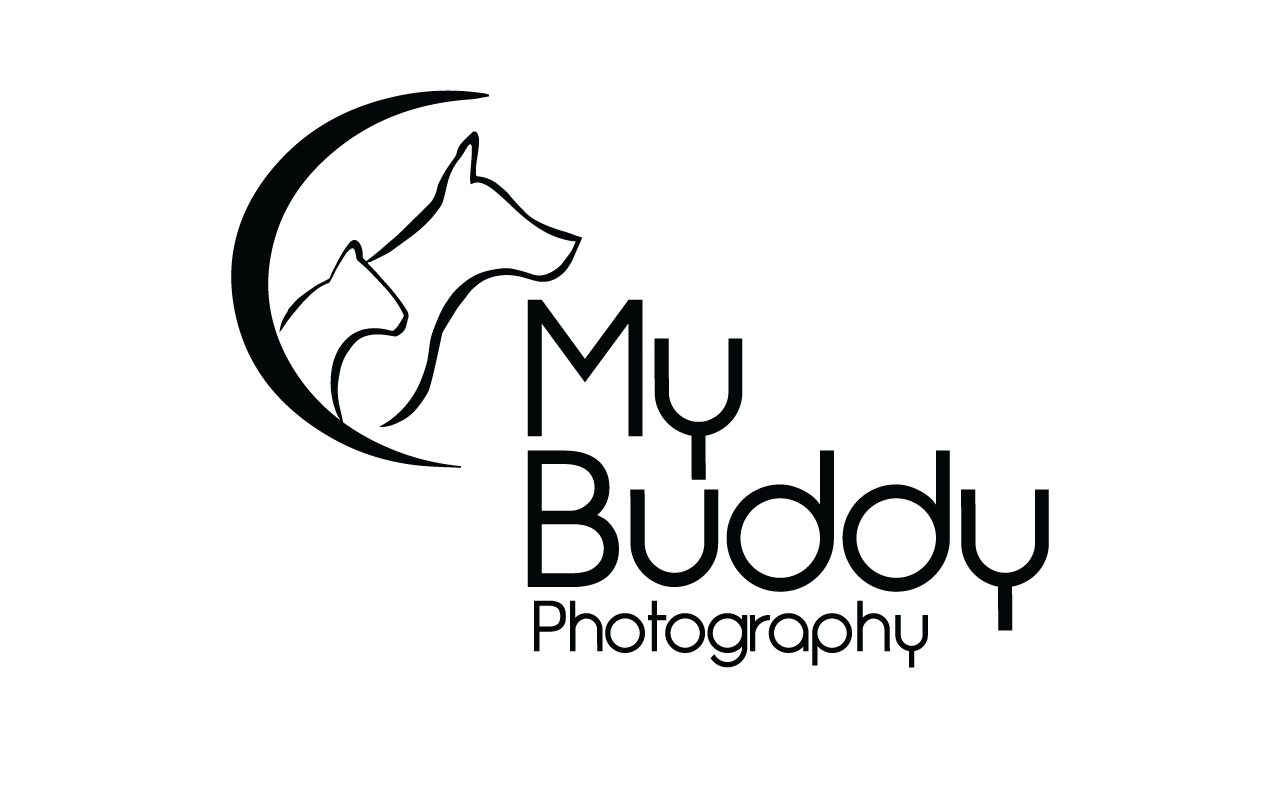 My Buddy Photography
