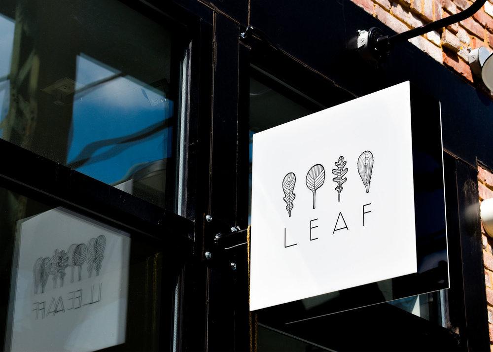 Leaf_Zoom.jpg