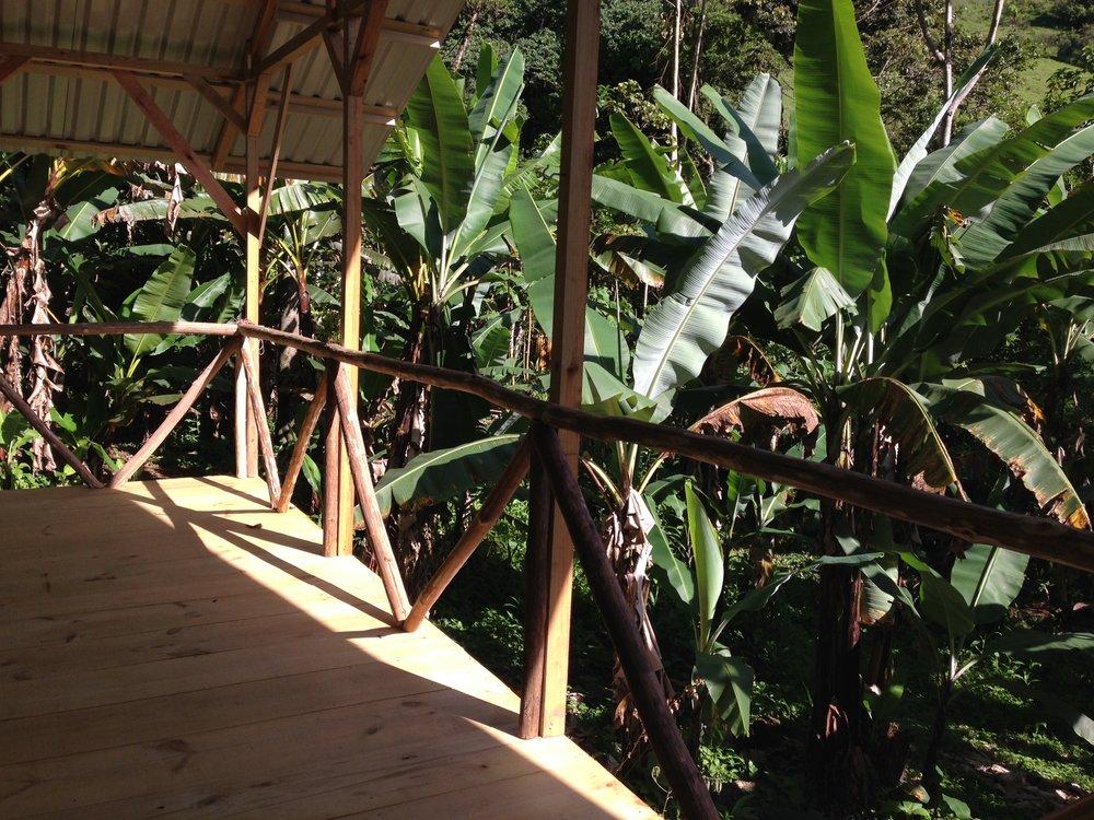 Platform #3  Se anida en el plátano Grove que le da una visión en la cima de los árboles.RATE puede ser de $ 35 a $ 1.200 dependiendo del plan que elija. 19,917 colones - 682,848 colones.