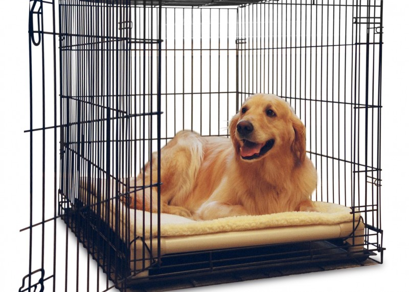 crate-bed-landing.jpg