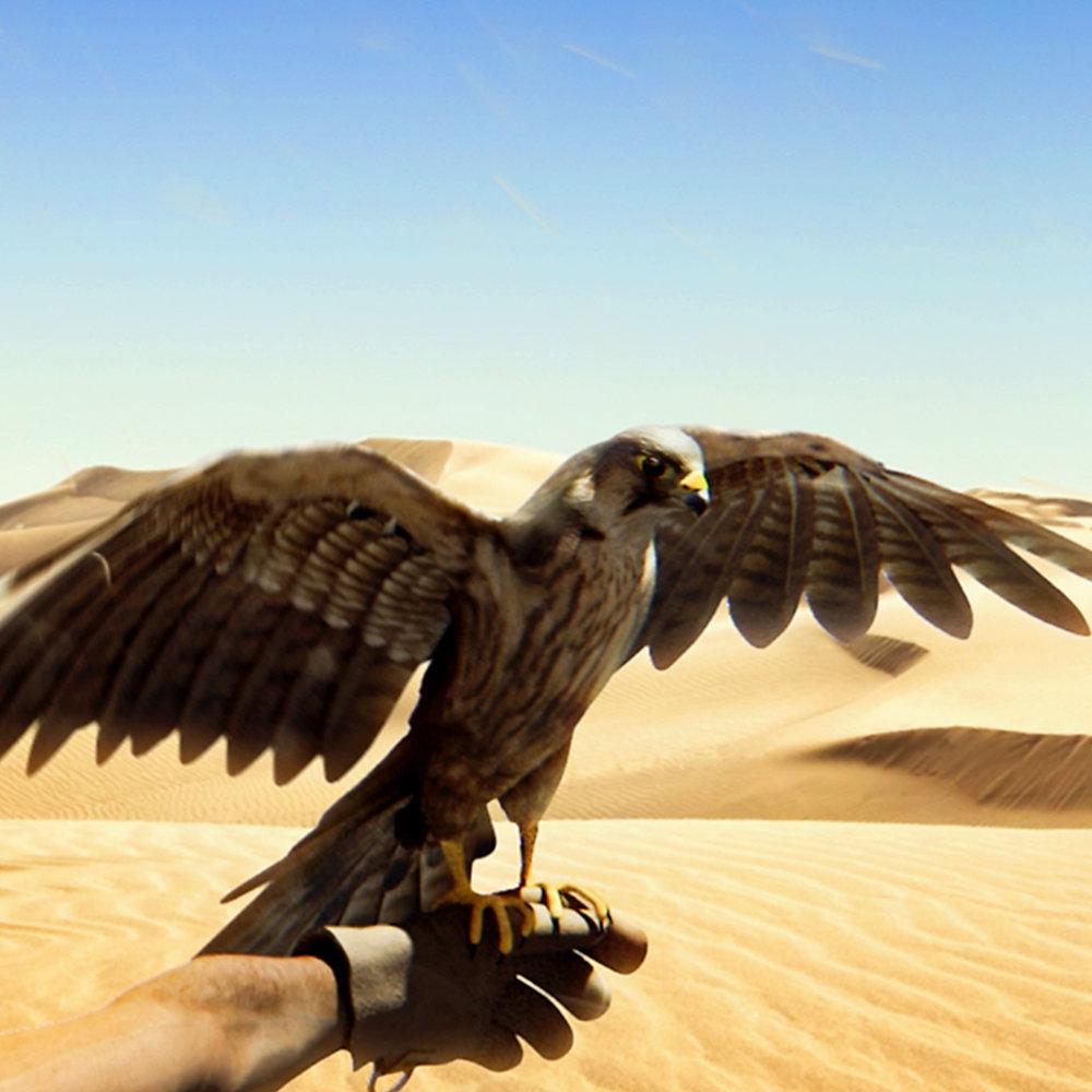 Dubai Falcon<strong>Dubai Tourism</strong>