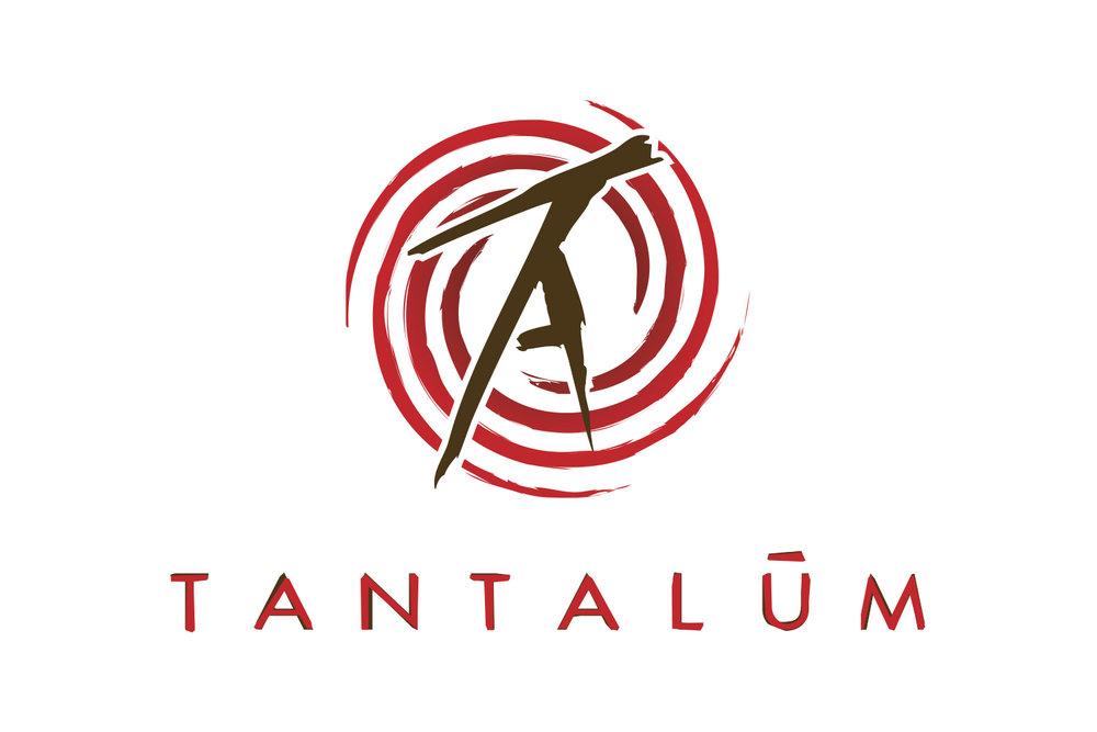 TA_logo1.jpg