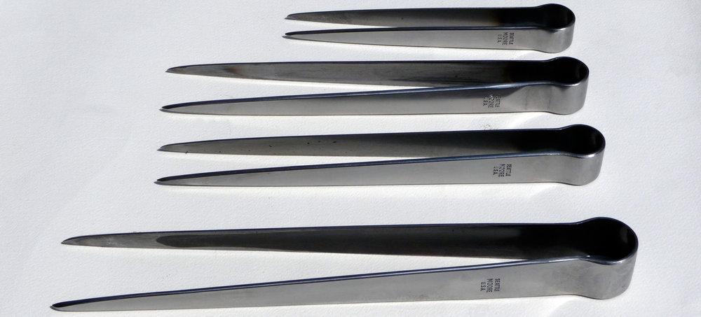 Tweezers (Photo by Jim Moore)