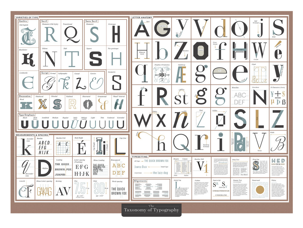 Taxonomy of Typography Poster by Pop Chart Lab