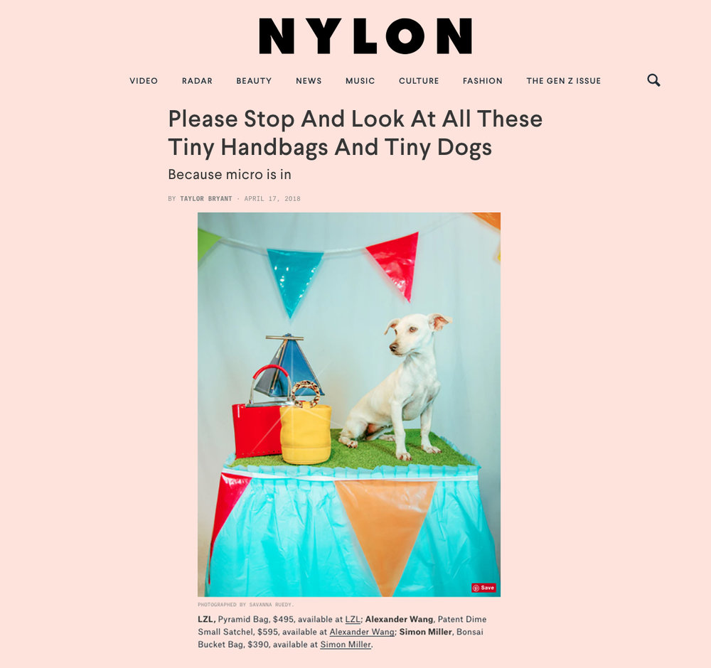 Nylon tiny dogs.jpg