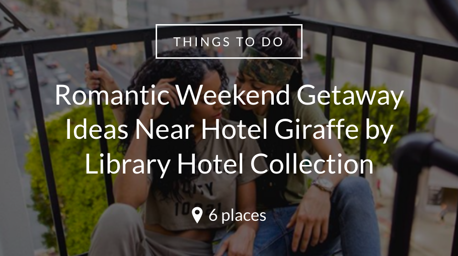 Hotel-Giraffe-by-Library-Hotel-Collection.png