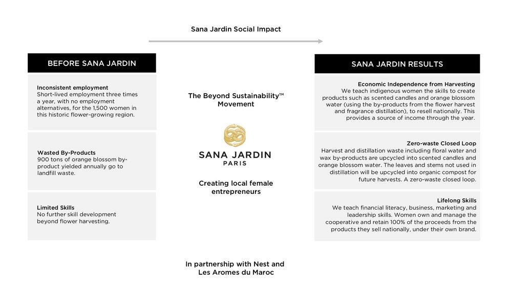 Beyond-sustainability-movementdiagramB03.jpg