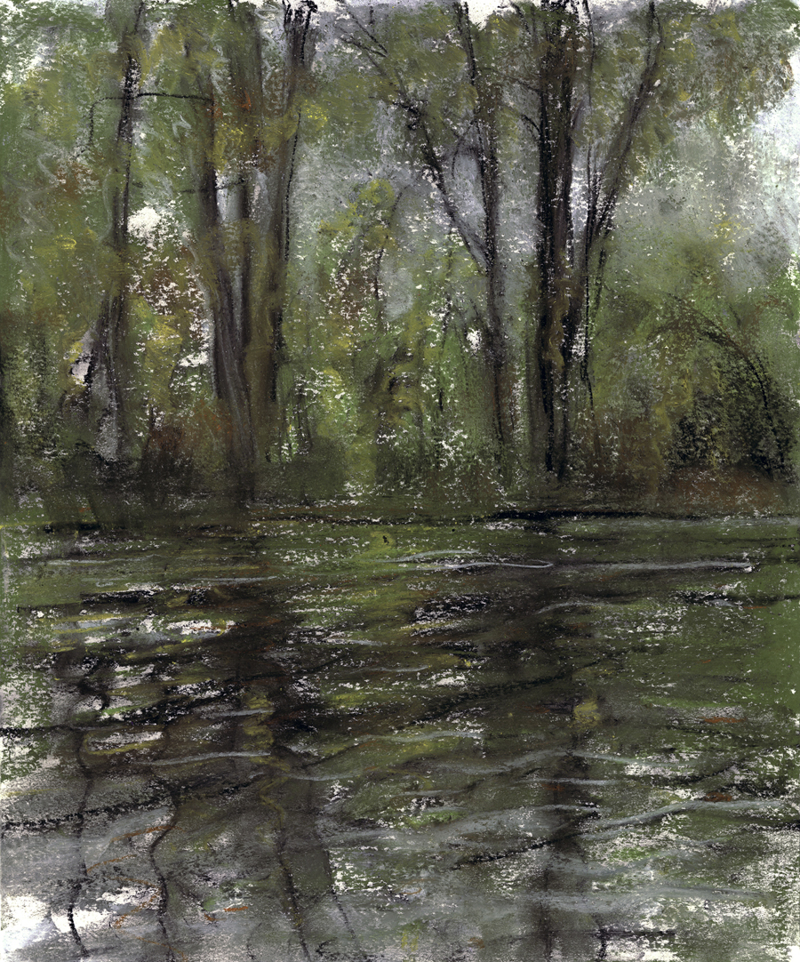 "Jim Schantz  Housatonic Reflection  Pastel on paper 14 x 11"" JMS725"