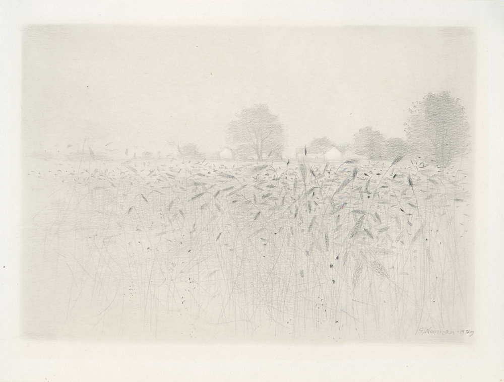 "Gunnar Norrman  Ragaker (Rye Field),  1979 Pencil 5.5 x 7.75"""