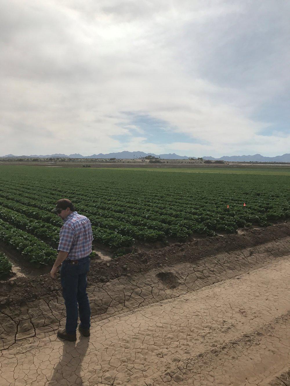 BRETT REYNOLDS Moses Lake, WA Senior Agronomist Managing Director, Agronomy Sales (509) 760-2304