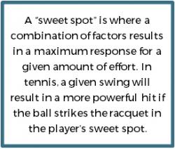 SIC-Niche-Sweet-Spot.png