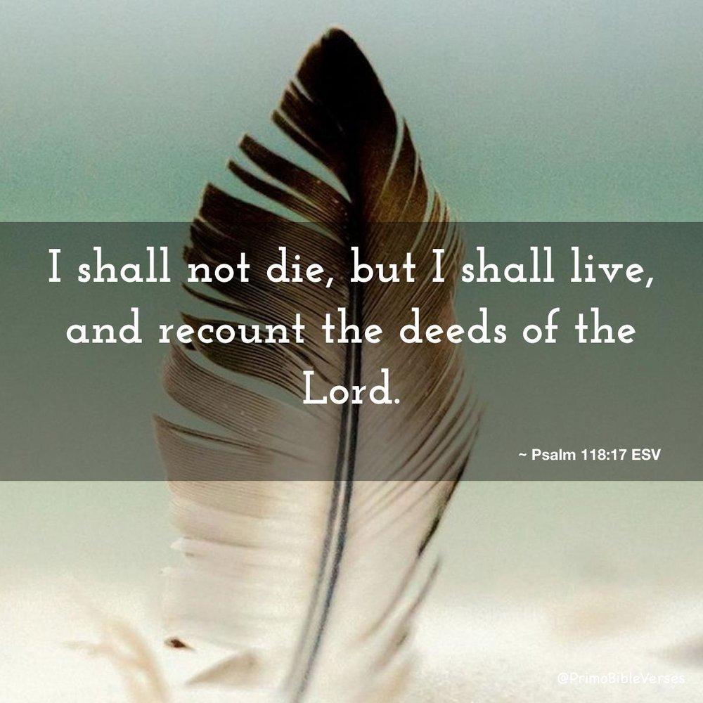 Psalm 118.jpg