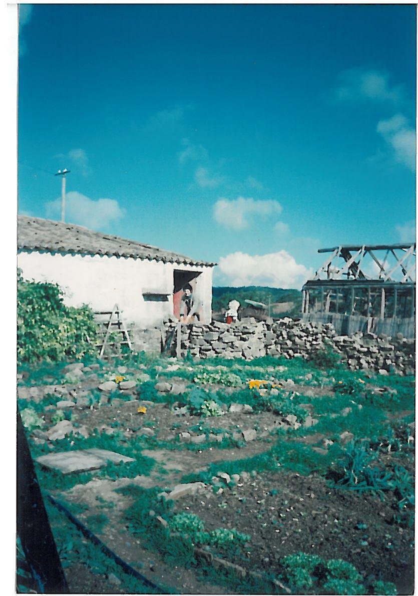 F14 1989 Erster Gemüsegarten.jpg