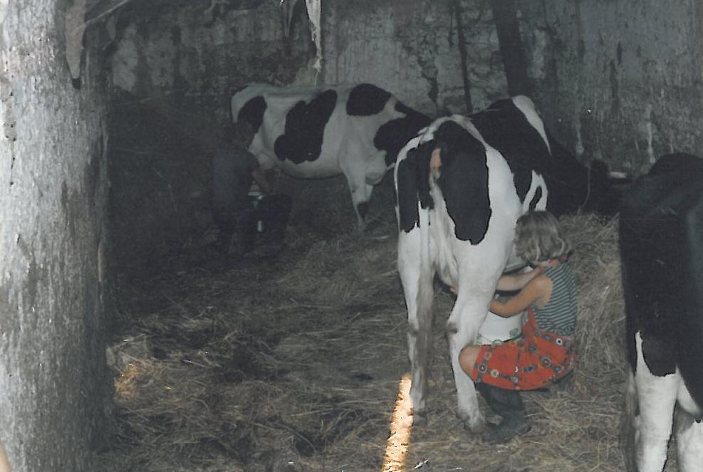 F17 Delia lernt das Melken im ersten Kuhstall.jpg