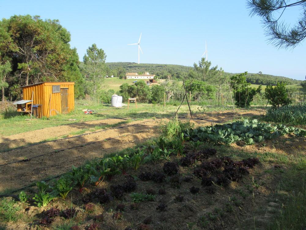 Landwirtschaft2.JPG