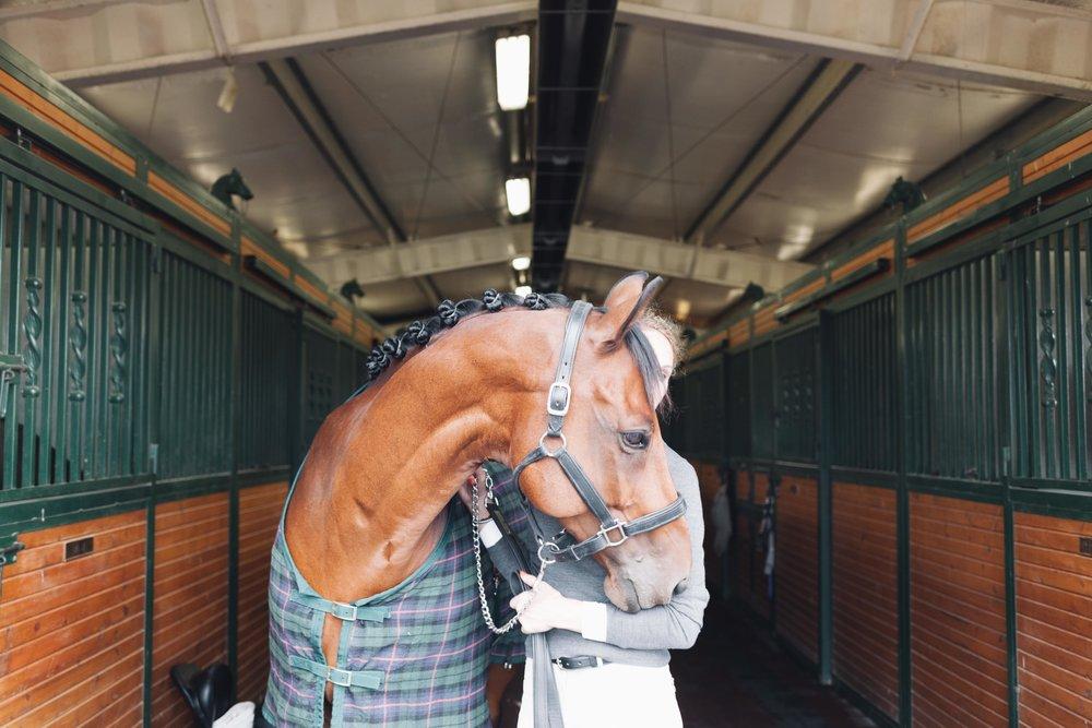 Mind.Body.Horse.Yoga.For.Equestrians.Online.Workshops.Jimena.Peck.Photography.-3.jpg