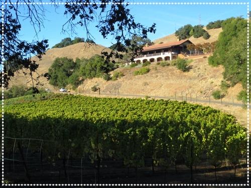 sonoma-wine-country
