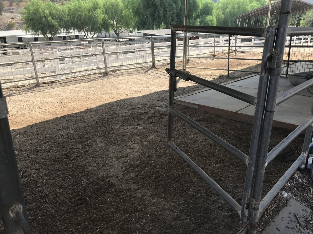 upper corral with mat.jpg