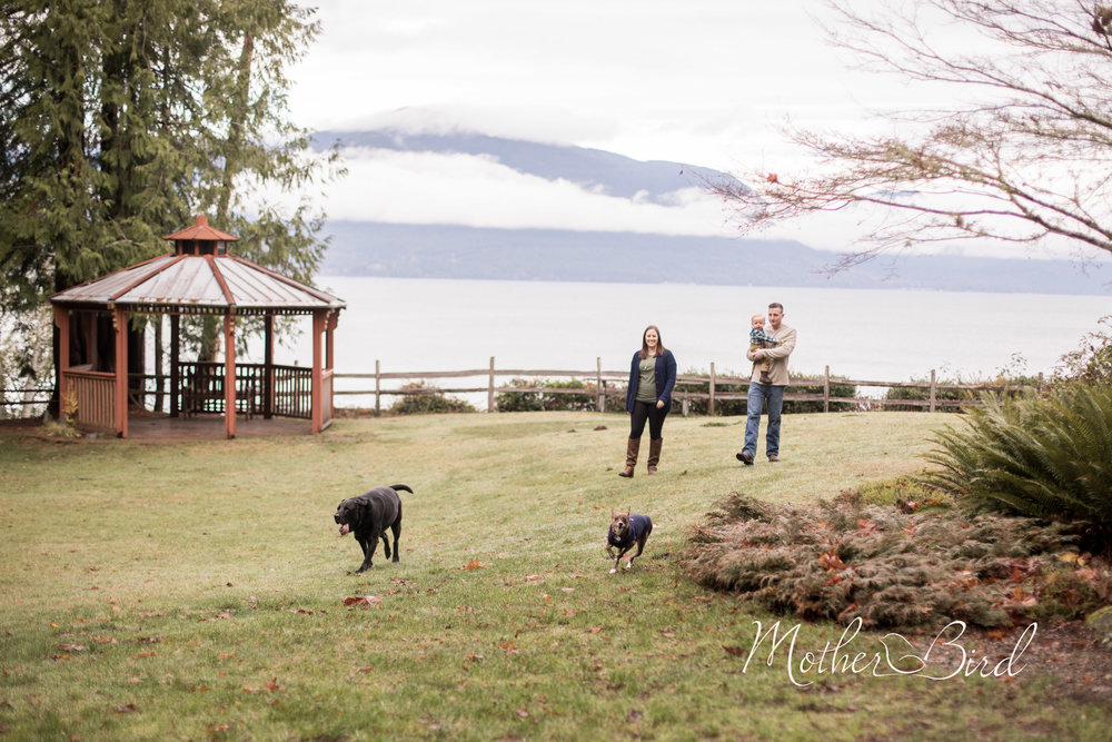 Hays Family 2017-2735.jpg