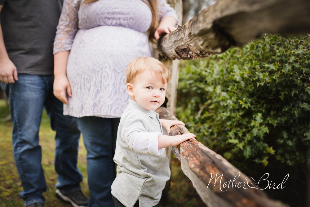 Blevins Maternity-0774.jpg