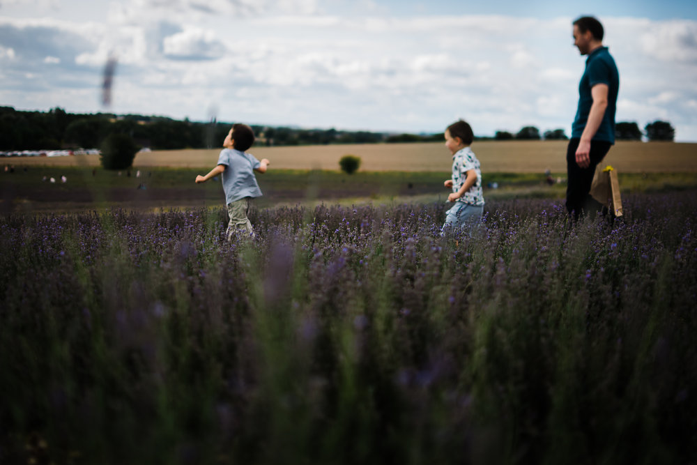 Family storytelling photography at Hitchin Lavender Farm