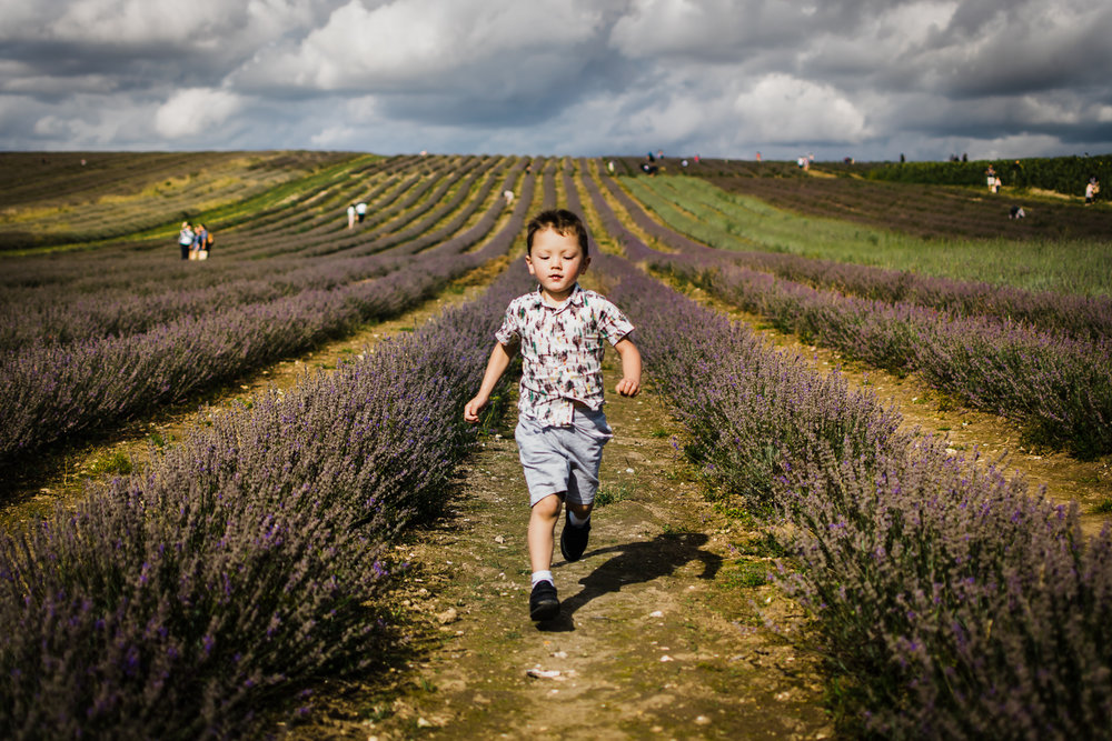 Boy running down the lavender rows
