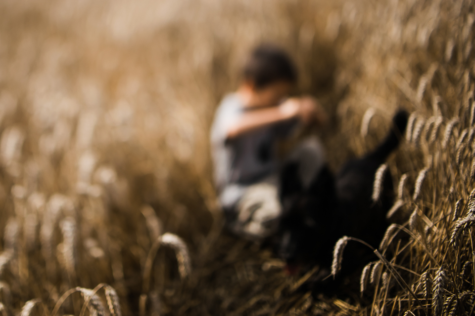 Diana Hagues Photography Freelensing summer adventures -  In the wheat.jpg