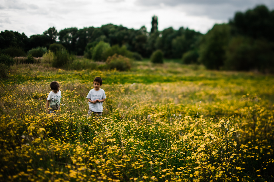 Diana Hagues Photography Freelensing summer adventures -  flower meadow.jpg