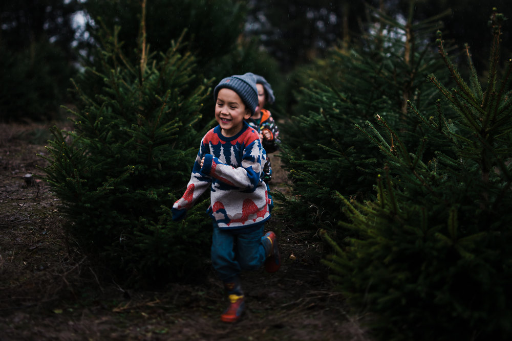 Fond memories at the Christmas tree farm - Diana Hagues storytelling photographer