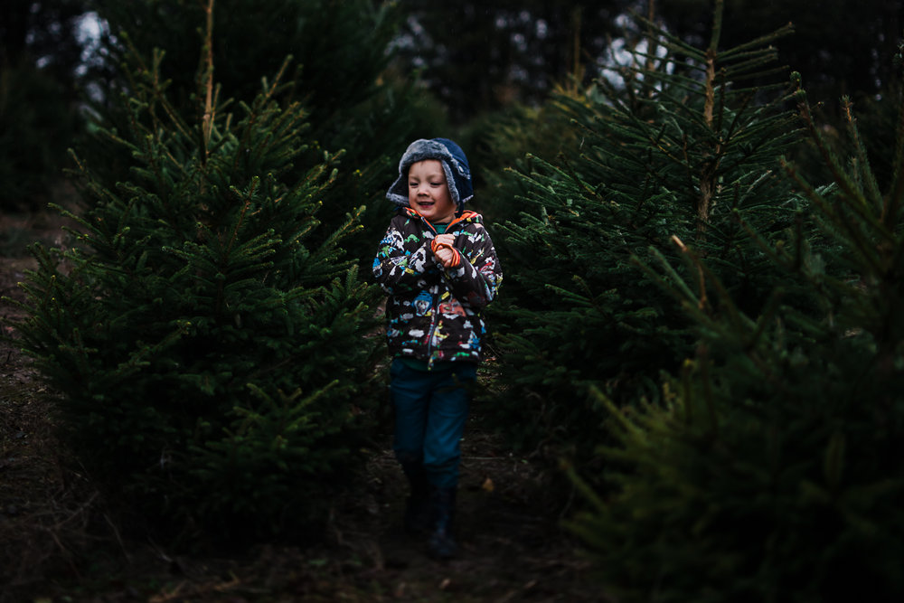 Christmas Tree Farm - Cambridgeshire - Storytelling and Documentary photography-22.jpg