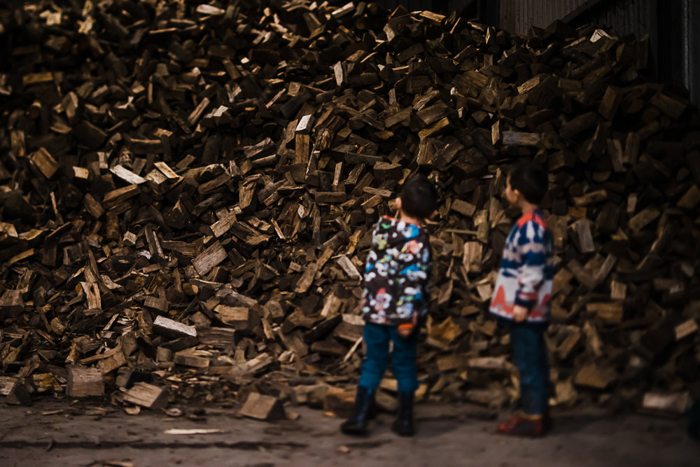 Boys inspecting piles of log kindle - Diana Hagues Cambridge storytelling and documentary photographer
