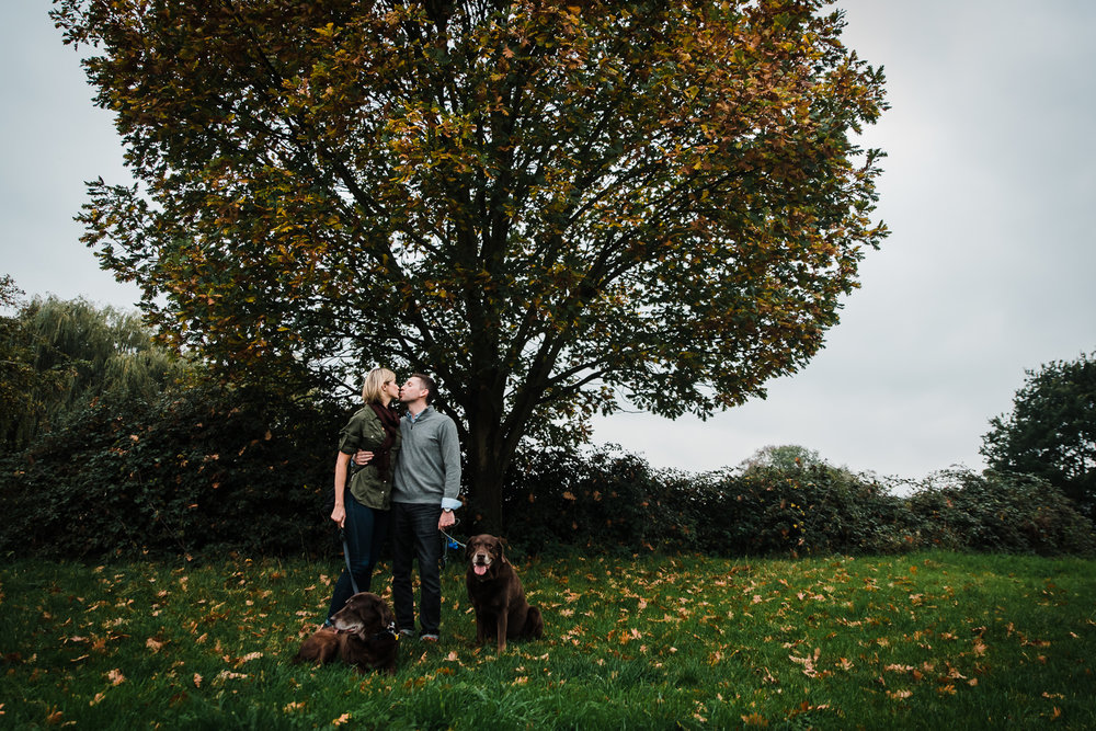 Couple in love kissing under tree with dogs and autumn colours