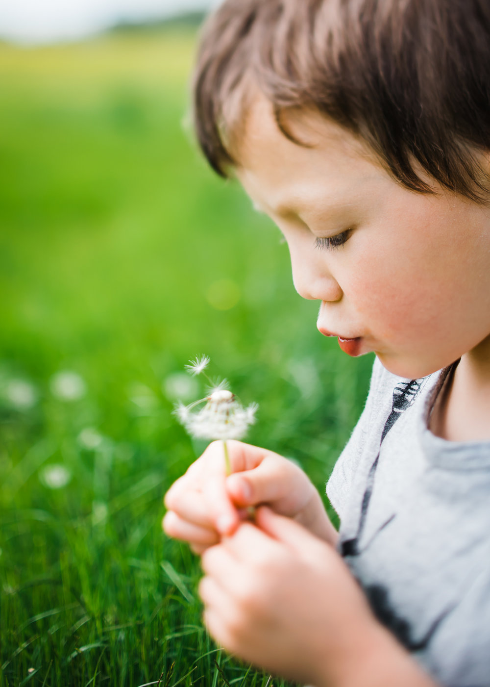 Child blowing dandelion in grassy field
