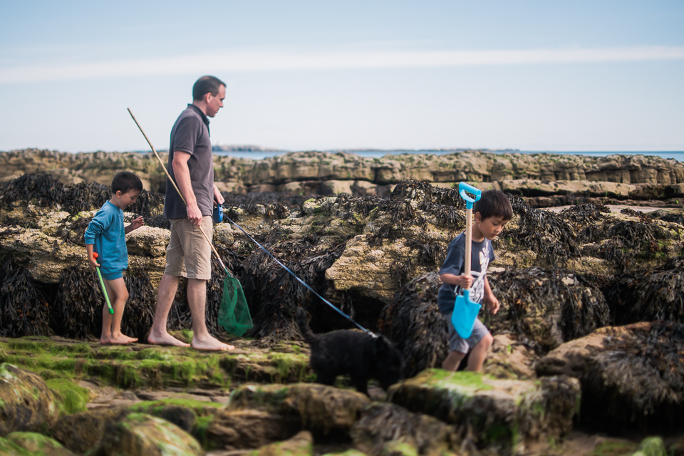 Father and sons walking in the rockpools at Bamburgh Beach