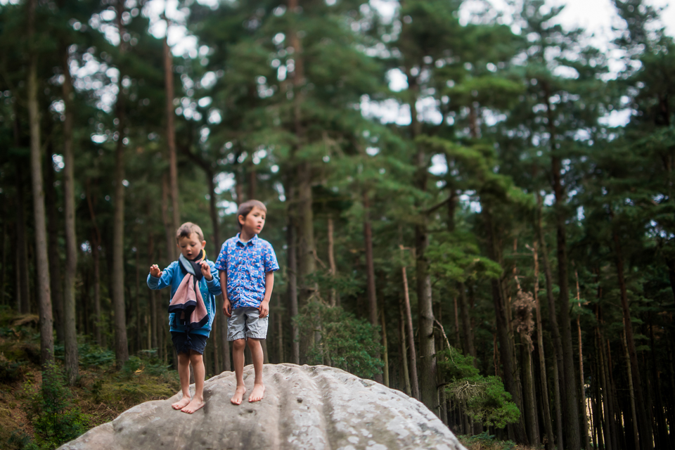 Children standing on a large rock in the middle of a coniferous