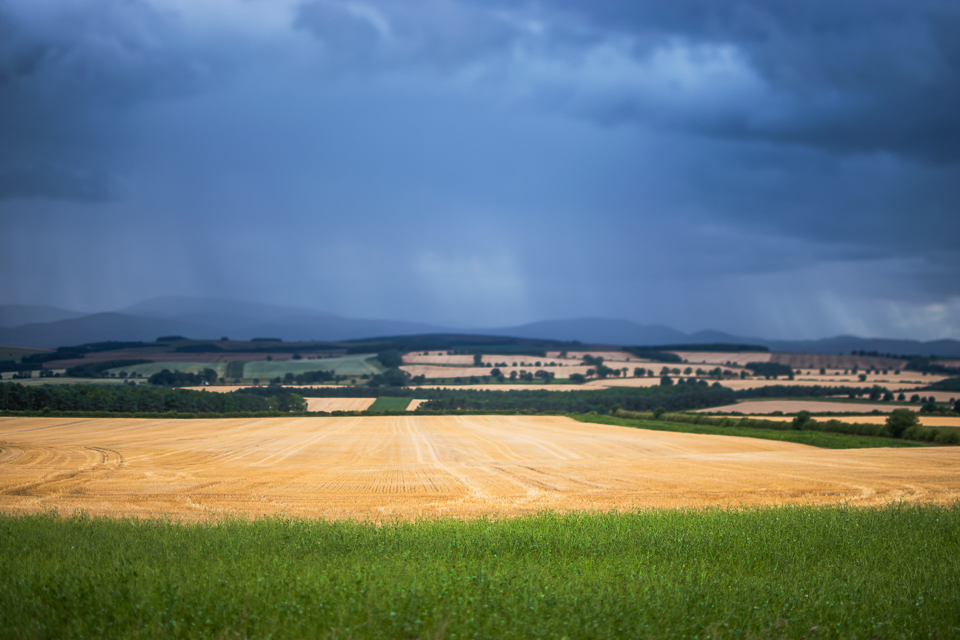Northumberland agricultural landscape - green, yellow and blue l