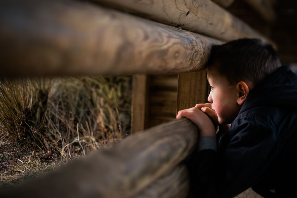 Boy looking out of the bird hide by Diana Hagues Photography, El