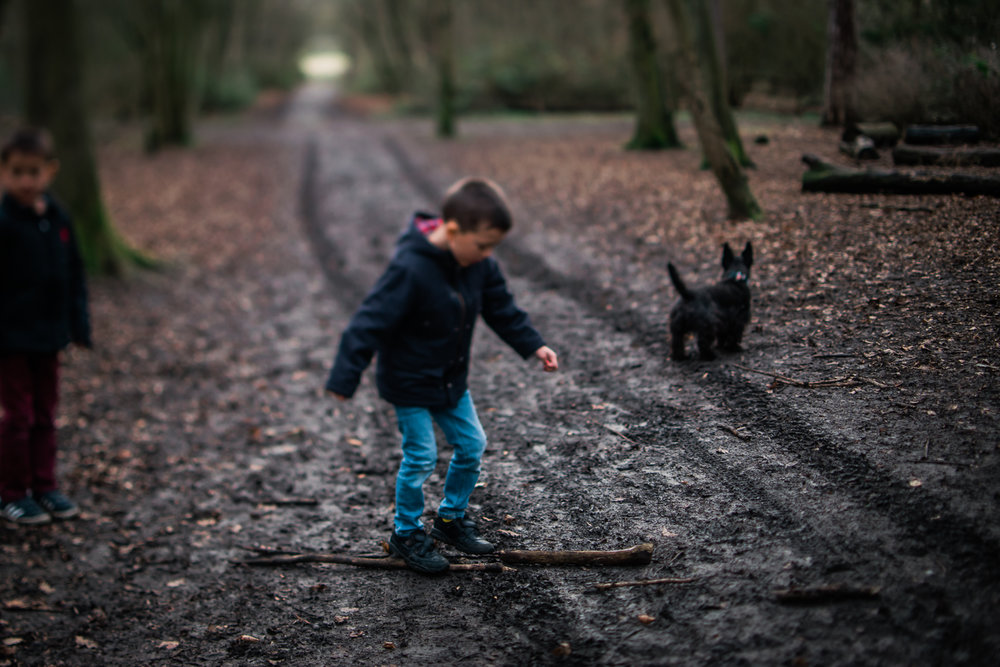 Boy walking on a stick in the woods at Hinchingbrooke Park, Hunt