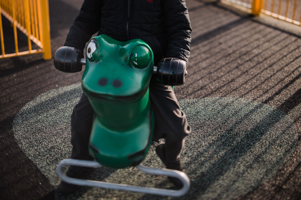 Frog play equipment
