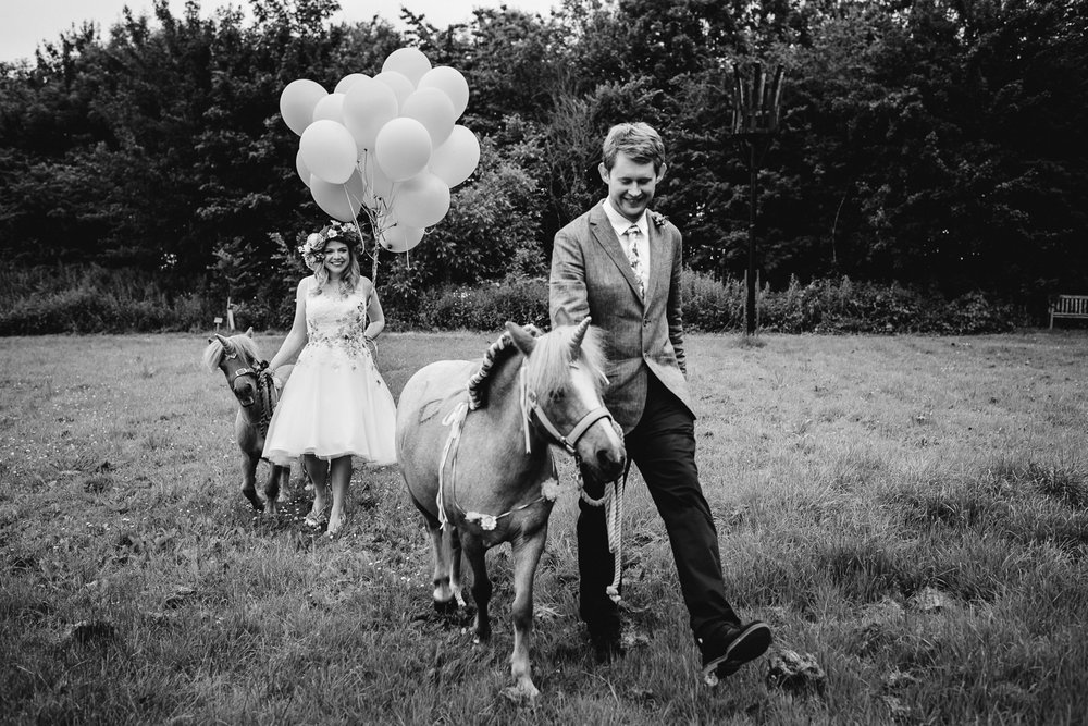 Bride and groom walking their shetland pony unicorns in the vill
