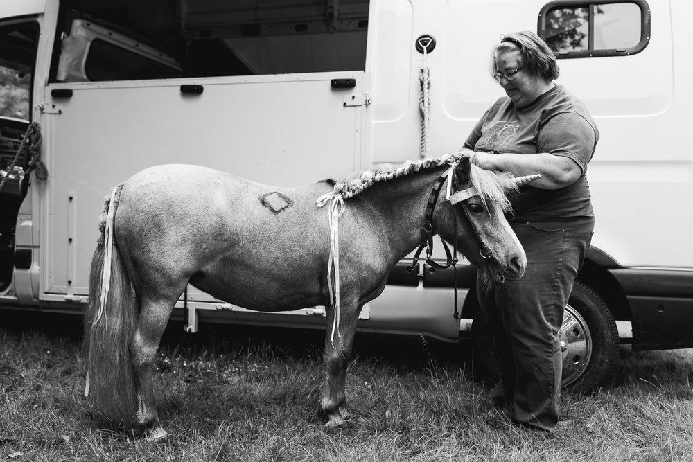 Cambridge Shetland Pony Party