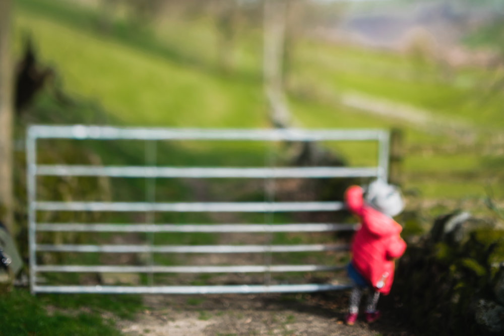 Copy of Child by a countryside gate, pink and green colours