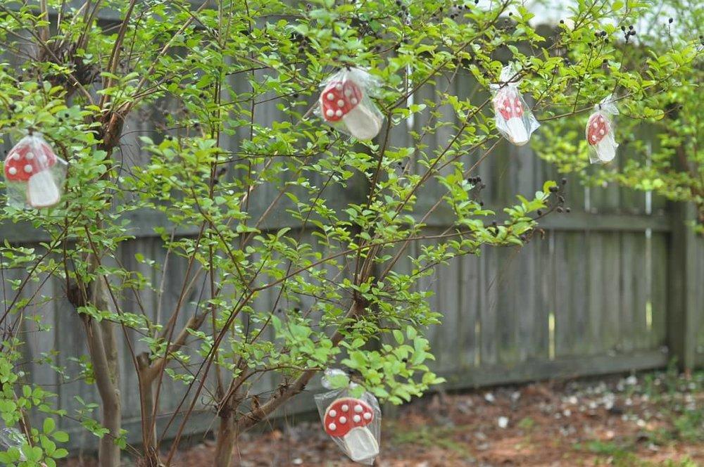 Haymount Homes Little Red Riding Hood Party Food Mushroom Cookie Tree.jpg
