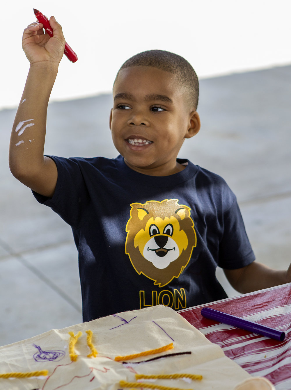 Lion is an expanded pilot program for Cub Scouts. - Answer the questions and Include your info to be a trained Lion leader.