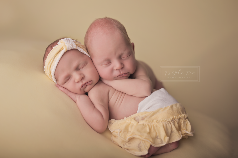 red deer twin newborn photos.png