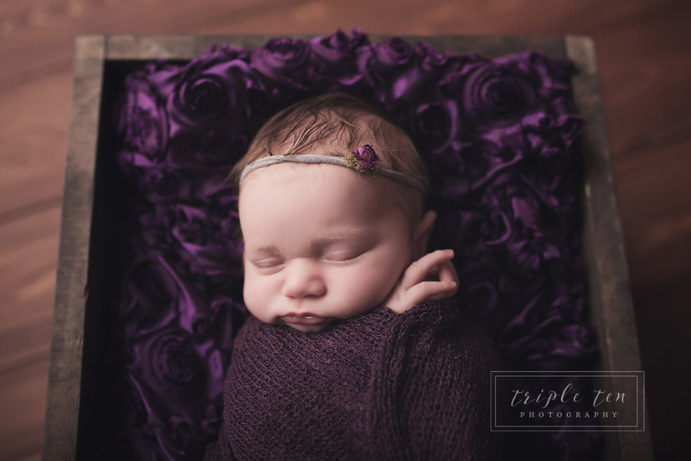 studio photographer red deer newborn prop box.jpg