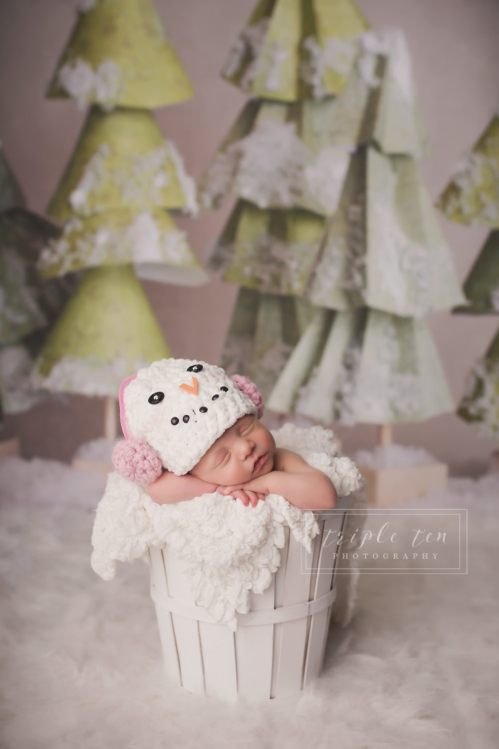 christmas newborn session red deer.jpg
